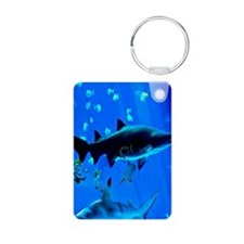 2 Black Tipped Sharks Keychainss