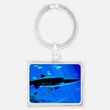 2 Black Tipped Sharks Landscape Keychain