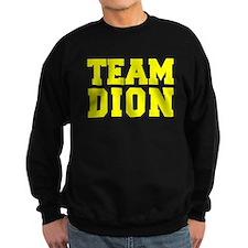 TEAM DION Jumper Sweater