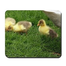 small geese children Mousepad
