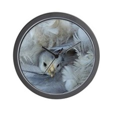 chickens chicks in the spring Wall Clock