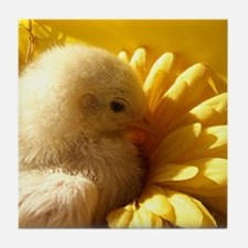 chicken chick in a flower Tile Coaster