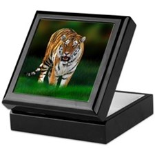 Tiger on Green Keepsake Box