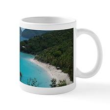 Trunk Bay Mug