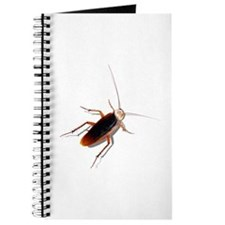 Pet Roach Journal