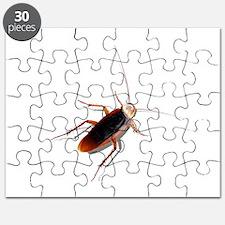 Pet Roach Puzzle
