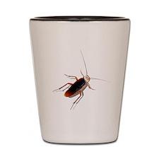 Pet Roach Shot Glass