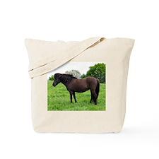 """Icelandic 2"" Tote Bag"