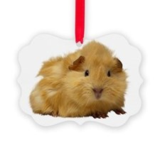 Guinea Pig gifts Ornament