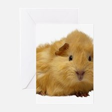 Guinea Pig gifts Greeting Cards