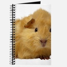 Guinea Pig gifts Journal