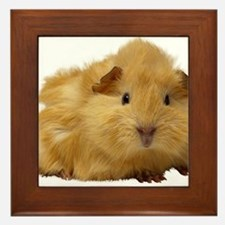 Guinea Pig gifts Framed Tile