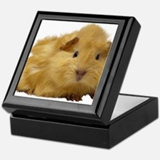 Guinea Pig gifts Keepsake Box