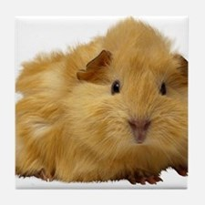 Guinea Pig gifts Tile Coaster