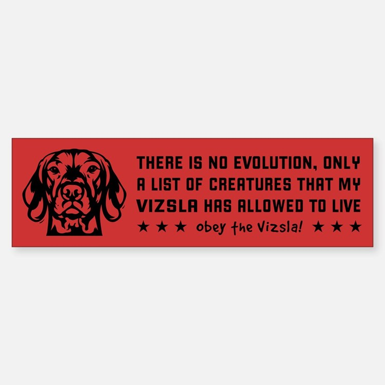 VIZSLA Big Brother- Evolution Bumper Car Car Sticker