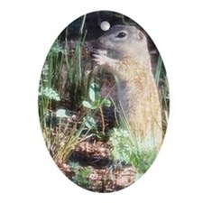 Prairie Dog in Texas Oval Ornament