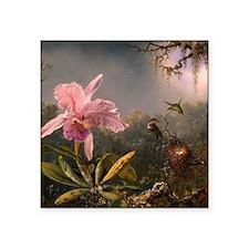 Cattleya Orchid and Hummingbirds Sticker