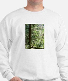 Forest Light Sweatshirt