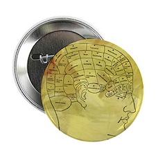 "Brain Map 2.25"" Button (100 pack)"