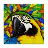 Macaw Drink Coasters