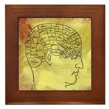 Brain Map Framed Tile