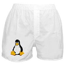 Linux Boxer Shorts