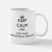 Keep Calm and Love your Agricultural Surveyor Mugs