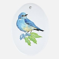 Watercolor Mountain Bluebird Bird nature Art Ornam