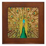 Bird art Framed Tiles