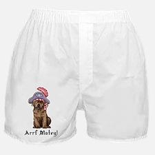 Chocolate Lab Pirate Boxer Shorts