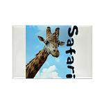 Safari Rectangle Magnet (10 pack)