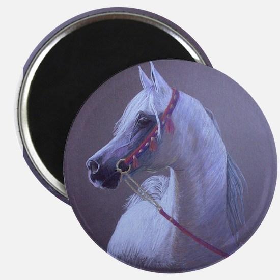 Arabian Magnet
