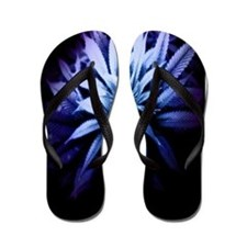 Blue Kush Flip Flops