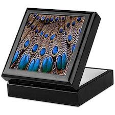 Peacock Feather Keepsake Box