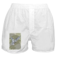 Flying Bird Insight Boxer Shorts