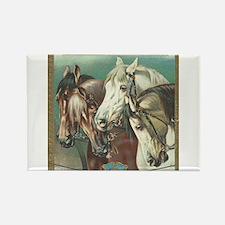 vintage horses Magnets