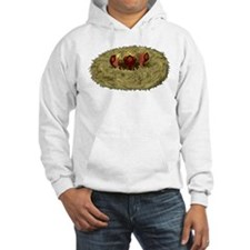 Birds nest with 3 hungry chicks Hoodie