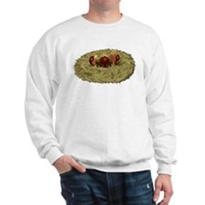 Birds nest with 3 hungry chicks Sweatshirt