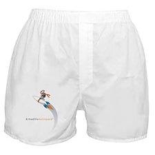 Armadillo Aerospace Boxer Shorts