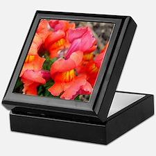 Snapdragon Sunset Keepsake Box