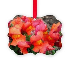 Snapdragon Sunset Ornament