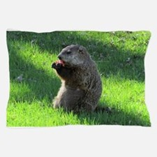 Groundhog Pillow Case