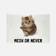 Meow Or Never Magnets