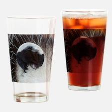 Opossum Ear Drinking Glass