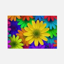 Colorful Daisies Magnets