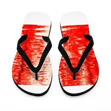 Red Sunrise Flip Flops