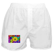 Colorful Daisies Boxer Shorts