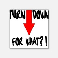 Turn Down For What?! Sticker
