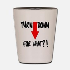 Turn Down For What?! Shot Glass