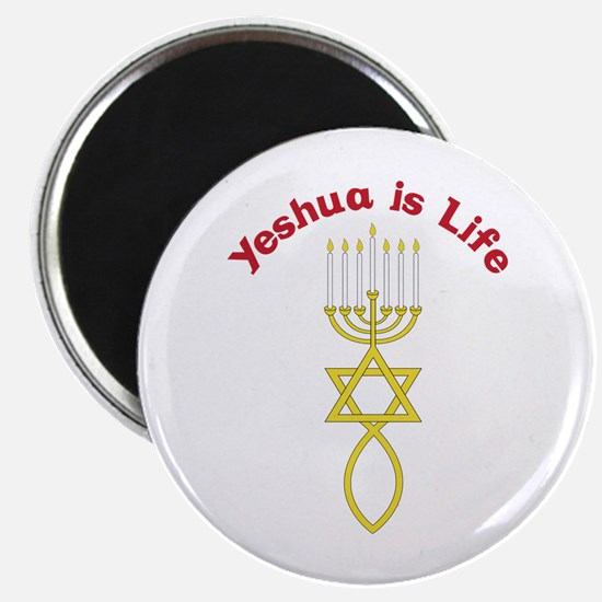 Yeshua is Life Magnets